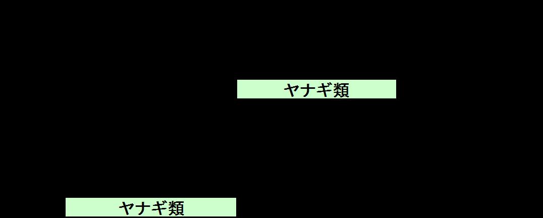rijityou12-12