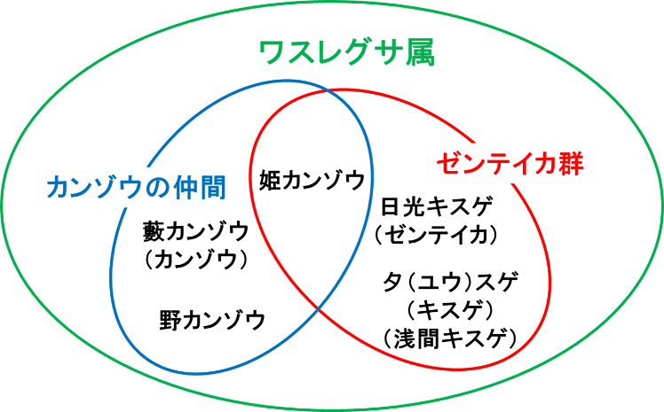 rijityou8-3
